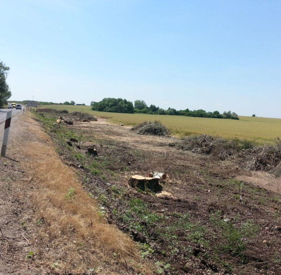 Régészeti gépi és kézi földmunka az M4 autópálya Abony-Fegyvernek szakaszon 2014-